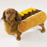 Casual Canine Hot Diggity Dog Costume- Mustard