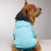 Casual Canine Mamas Boy Tee Baby Blue