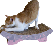 The Zen Cat Lounger/Scratcher